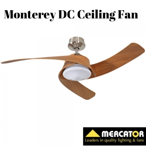 Mercator Monterey