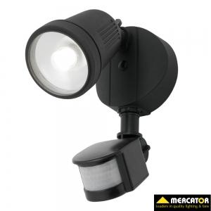 Otto 12w Floodlight with sensor