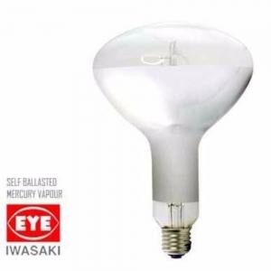 SBR250 self Ballastlamp